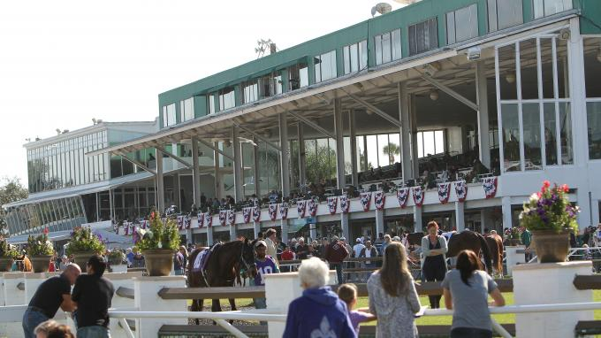 Tampa Bay Downs Schedule 2019 2019 Lambholm South Tampa Bay Derby | America's Best Racing