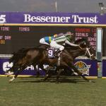 Breeders' Cup Fantastic Finishes: 'Too Close to Call' in Unforgettable Dead Heat