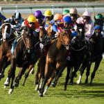 You Can Still Watch and Bet on Horse Racing