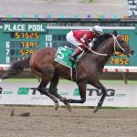 Landing on a Longshot to Win 2020 Preakness Stakes