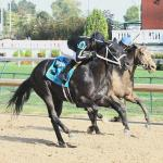 The Tabulator, Patrona Margarita Earn Breeders' Cup Berths at Churchill