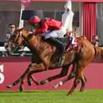 SLIDESHOW: Waldgeist Denies Enable in Arc to Headline 'Win and You're In' Day at Longchamp
