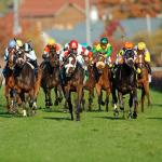Surface Switch Can Lead to Big Price in 2-Year-Old Races