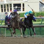 Disqualifier for Kentucky Derby? One Streak Has Stood Test of Time