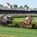 Saratoga at a Glance: What You Need to Know