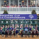 Pairing Opinions With Live Odds Board to 'Make Your Day' This Breeders' Cup