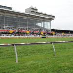 What's in a (Race) Name? A Horse Named Preakness