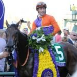 Inside the Numbers: The Breeders' Cup