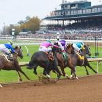 Looking for a Longshot in 2019 Raven Run Stakes