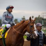 California Chrome Gets Serious in Preparation for Breeders' Cup