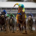 Breeders' Cup to Be Held Without Fans, Will Return to Keeneland in 2022
