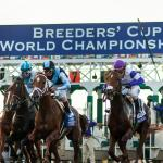 StableDuel Announces Back2Back at the Breeders' Cup Promotional Contest