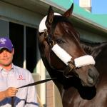 Woodbine Diaries: A Perfect First Day in Toronto