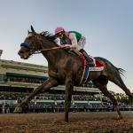 Open Letter to America: Time to Appreciate Arrogate
