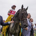 Inside the Numbers: 2018 Preakness Stakes