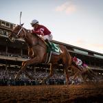 Gun Runner: Qualities a Horse Needs for a Long, Successful Racing Career