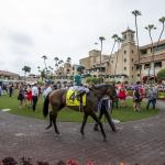 Making Money Betting Accelerate in San Diego Handicap