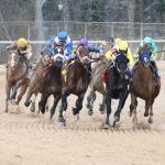 Haskin's Derby Dozen for March 21