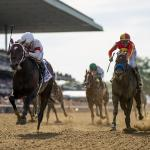 Mitole, Midnight Bisou, World of Trouble Sparkle at Belmont
