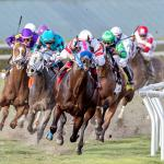Daily Horse Racing Lineup: Racetracks to Watch and Bet Today