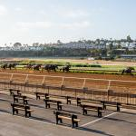 2020 Clement L. Hirsch Stakes at a Glance