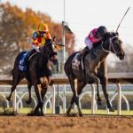 Picking a Breeders' Cup Juvenile Fillies Winner Using History as a Guide