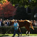 Belle's Best Bets: Looking for Value at Belmont, Keeneland
