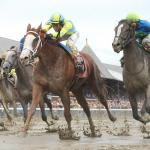 Explaining 'Main Track Only' Horses, Evaluating Races Taken Off Turf