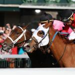 Nine Things to Know About the 2020 Ashland Stakes