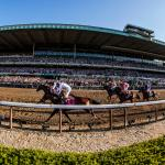 Twelve Things to Know About Belmont Park