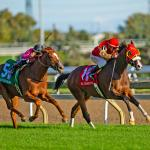 2020 Woodbine Mile at a Glance