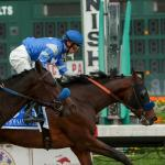 Thousand Words Turns Back Anneau d'Or in Los Alamitos Futurity