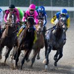 2020 Louisiana Derby Cheat Sheet