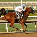 Improbable Much the Best in Awesome Again, Juveniles Shine at Santa Anita