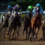 2020 Santa Anita Derby Cheat Sheet