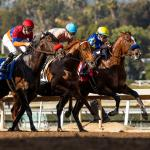 Haskin's Derby Dozen for Jan. 22