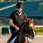 2021 Woodward Stakes Quick Sheet: Get to Know the Horses