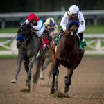 Making Money Betting Life is Good in the San Felipe Stakes