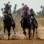 Rock Your World Should Be Tough to Catch in Belmont Stakes