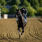 'Big Kid' Midnight Bourbon Ready to Take Next Step for Asmussen in Preakness