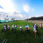 Where to Watch/Listen: Horse Racing Coverage for Oct. 14-18