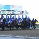 Byron King's Derby Dozen for April 7