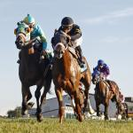 A Little Creativity Can Go a Long Way When Betting Turf Races