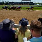 Horse Racing: The New World of Content