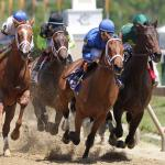 Beginner's Guide to Trip Handicapping