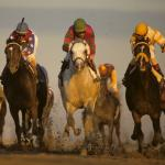Exploring the Breeders' Cup Classic's Impact on Horse of the Year