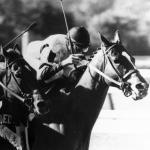 The Sport's Great Rivalries: Affirmed and Alydar