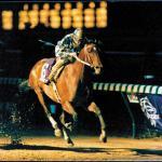Alysheba: America's Horse