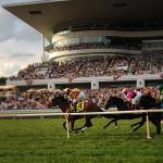 Know Before You Go: Arlington International Racecourse