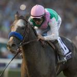 What's Next for Breeders' Cup Stars